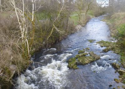 River Dryfe alongside local walk
